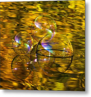 On Golden Lake Metal Print by Terry Cosgrave