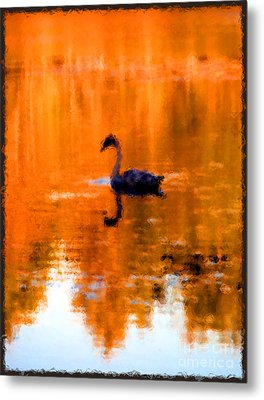 On Golden Pond Metal Print by Jack Gannon