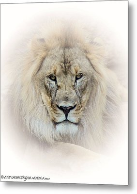 Metal Print featuring the mixed media On Guard Duty by Elaine Malott