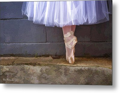 Metal Print featuring the photograph On Point by Linda Blair