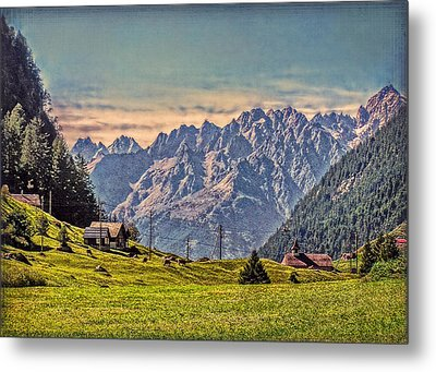 On The Alp Metal Print by Hanny Heim
