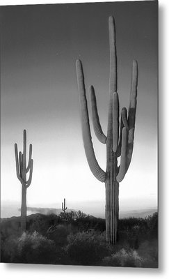 On The Border Metal Print by Mike McGlothlen