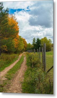 On The Farm Metal Print by Jill Laudenslager