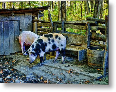 On The Farm Metal Print by Kenny Francis