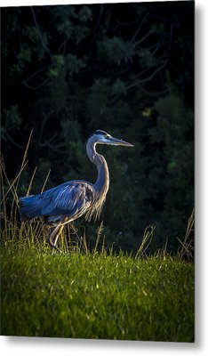 On The March Metal Print by Marvin Spates