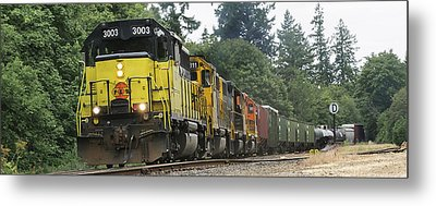 On The Rails Metal Print