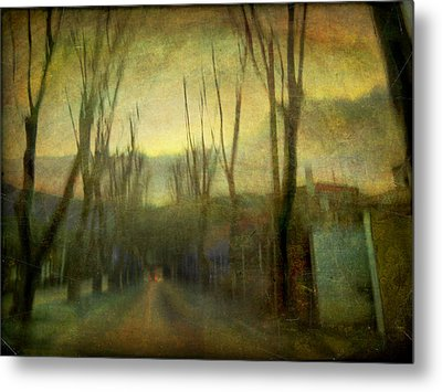 Metal Print featuring the photograph On The Road #13 by Alfredo Gonzalez