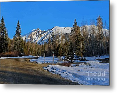 On The Road Again Metal Print by Fiona Kennard