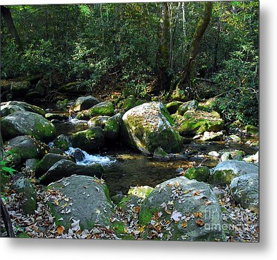 On The Rocks Metal Print by Mel Steinhauer