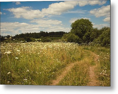 On The Summer Meadow II. Russia Metal Print by Jenny Rainbow