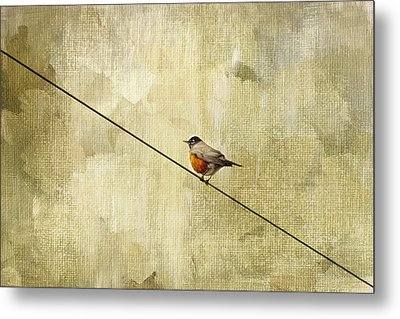 On The Wire Metal Print by Rebecca Cozart