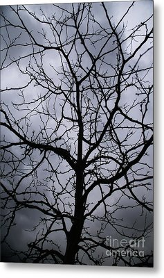 Metal Print featuring the photograph On Their Shoulders Held The Sky by Linda Shafer