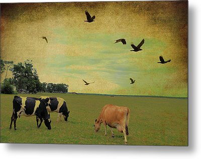 On This Green Earth Metal Print by Jan Amiss Photography