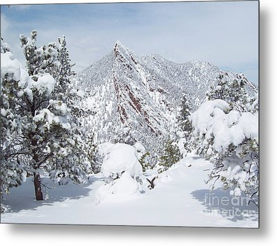 On Top Of Bear Peak Snow Mountain  Metal Print