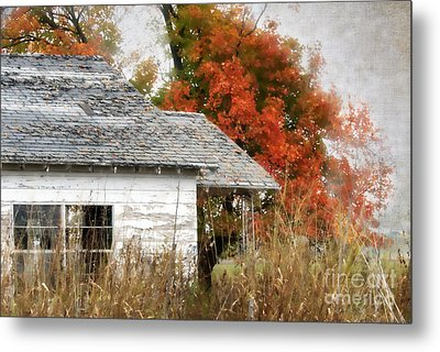 Once I Laughed Metal Print by Betty LaRue