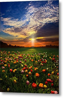 Once Upon A Time Metal Print by Phil Koch
