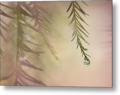 One Drop Metal Print by Maria Robinson