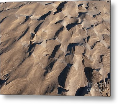 One Of A Kind Metal Print by Ann Horn