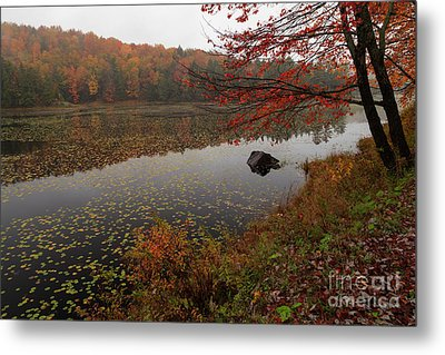 One Of The Worcester Ponds Metal Print by Charles Kozierok