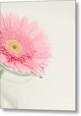 One Single Drop Metal Print by Kay Pickens