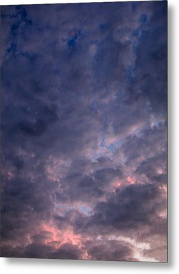 Finally It Rained In Texas Metal Print by Connie Fox