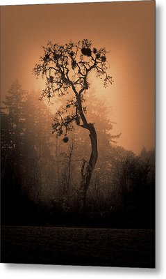One Stands Alone Metal Print by Dale Stillman