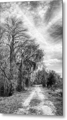 One The Levy Metal Print by Howard Salmon
