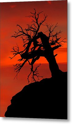 One Tree Hill Silhouette Metal Print