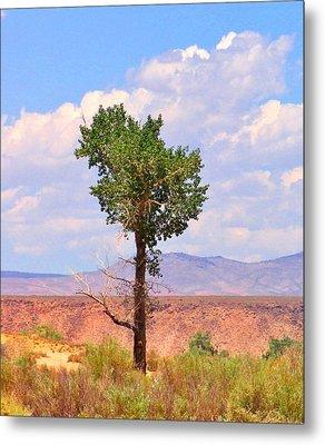 One Tree Metal Print by Marilyn Diaz