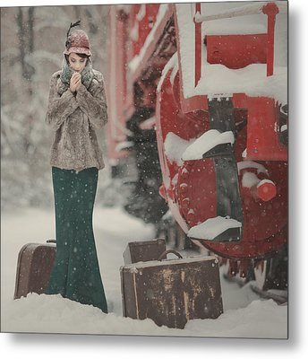 One Winter Story Metal Print