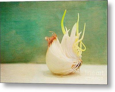 Onion Bird Metal Print by Kay Pickens