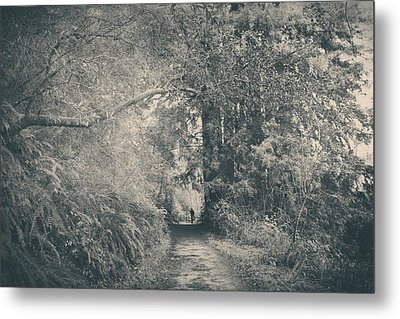 Only Peace Metal Print by Laurie Search