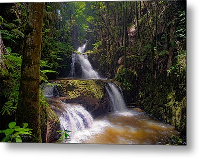 Metal Print featuring the photograph Onomea Falls by Jim Thompson