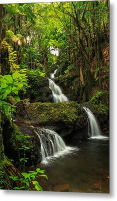 Onomea Falls Metal Print by James Eddy