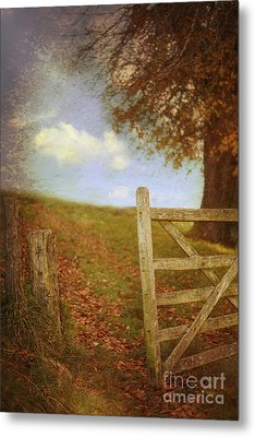 Open Country Gate Metal Print by Amanda Elwell