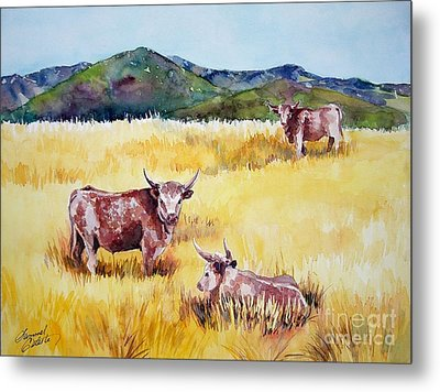 Open Range Patagonia Metal Print by Summer Celeste