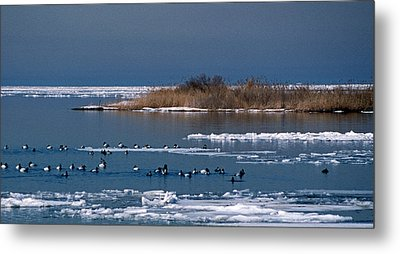 Open Water Metal Print by Skip Willits