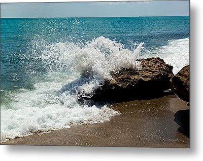 Opposing Forces Metal Print by Michelle Wiarda