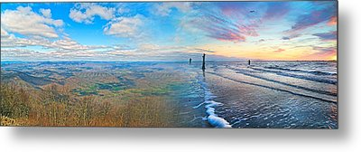 Opposites Attract Metal Print by Betsy Knapp