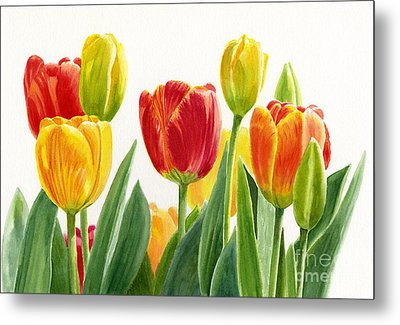 Orange And Yellow Tulips Horizontal Design Metal Print by Sharon Freeman