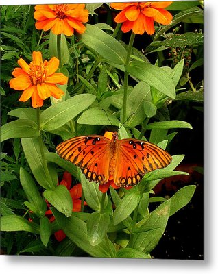 Orange Creatures Metal Print