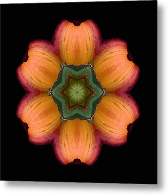Orange Daylily Flower Mandala Metal Print