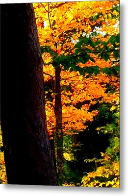 Metal Print featuring the photograph Orange Foliage by Denyse Duhaime