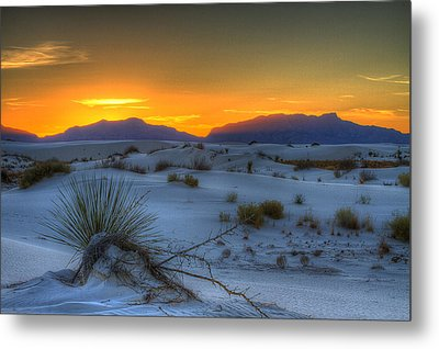 Metal Print featuring the photograph Orange Glow by Kristal Kraft
