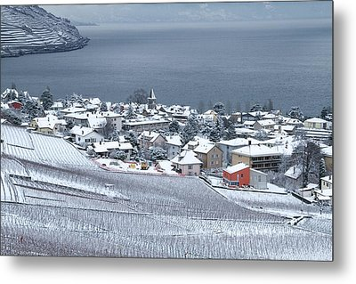 Metal Print featuring the photograph Orange House In The Vineyards by Colleen Williams