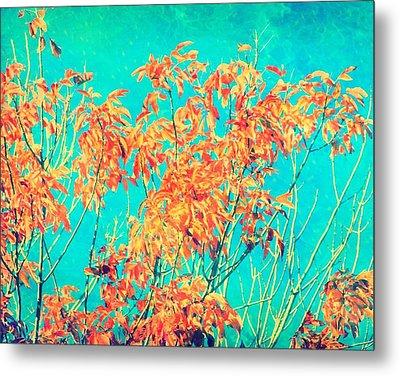 Orange Leaves And Turquoise Sky  Metal Print
