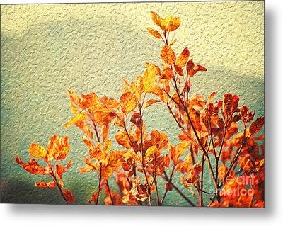 Orange Leaves Metal Print by Yew Kwang