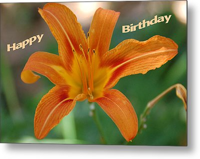 Orange Lily Birthday 1 Metal Print by Aimee L Maher Photography and Art Visit ALMGallerydotcom