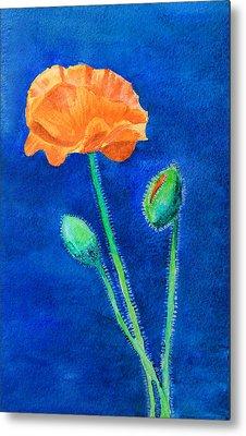 Orange Poppy Metal Print