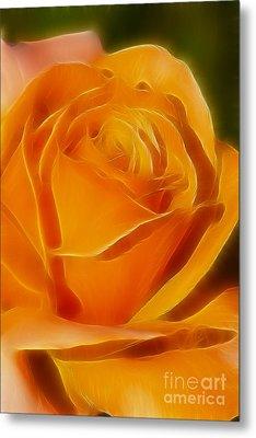 Orange Rose 6291-fractal Metal Print by Gary Gingrich Galleries